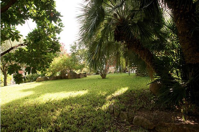 B&B Villa Ines, il giardino